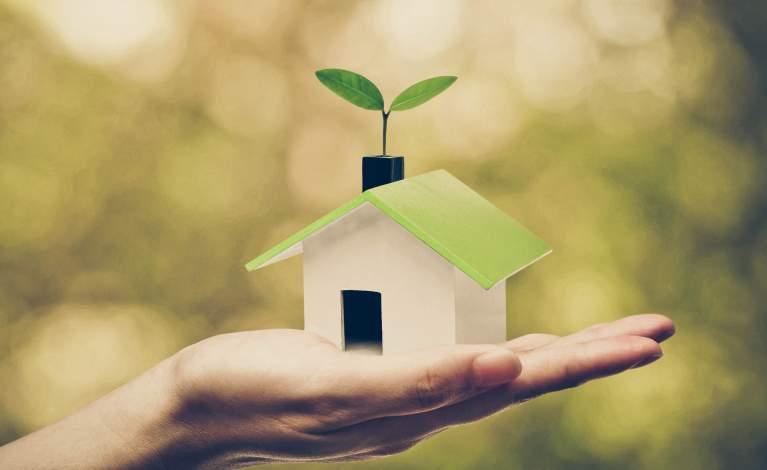Immobilier neuf et économies d'énergie
